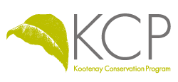 KCP Online Logo