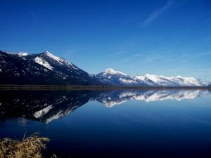 Darkwoods Kootenay Lake - Marc Andre Beaucher