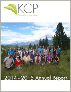 KCP 2015 Annual Report (final)