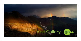 Visit the Photo Gallery