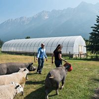 Farm Resources