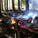 KCP Stewardship - Firesmart - Photo Credit : Bruce Blackwell