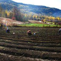 KCP Stewardship - Farms & Ranches