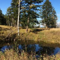 KCP Stewardship Toolkit - Construct wetland on your property