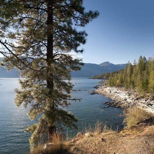 Learn to Protect your Shoreline on Kootenay Lake