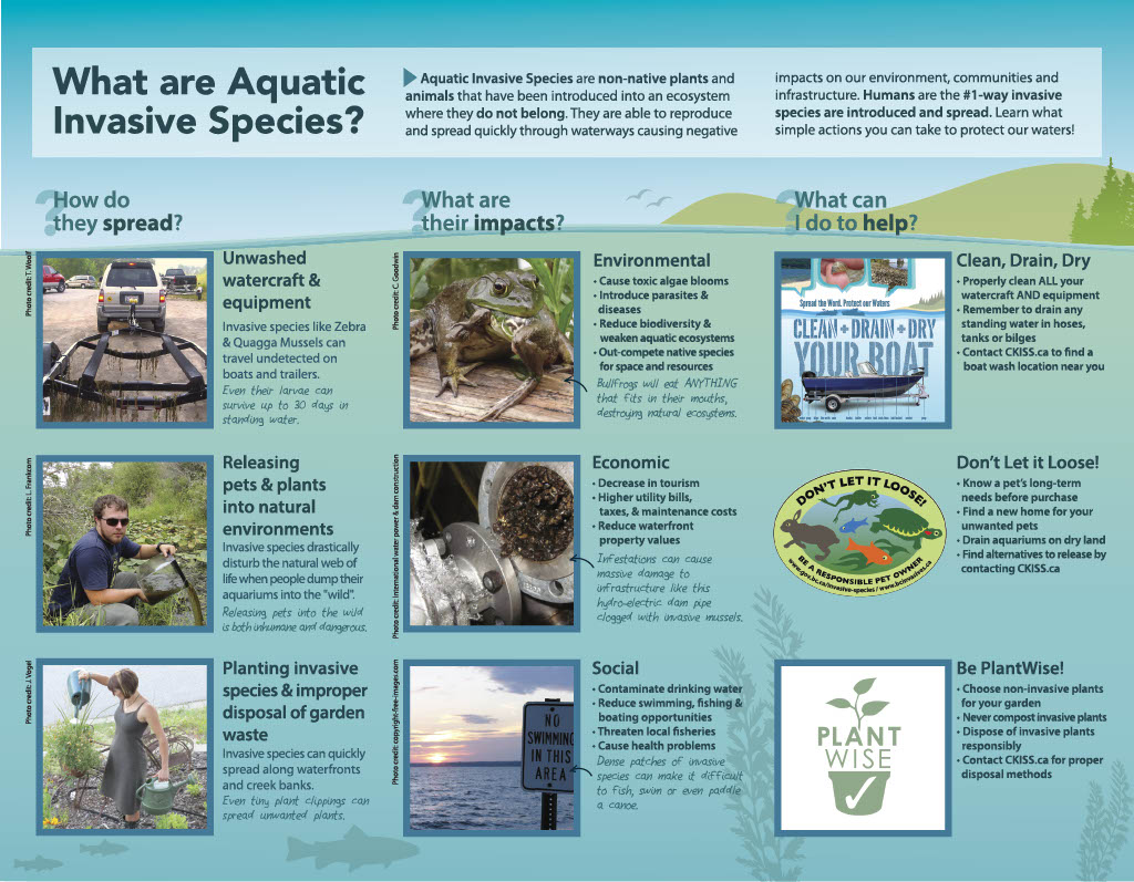 CKISS Brochure - Protect the Kootenays from Aquatic Invaders