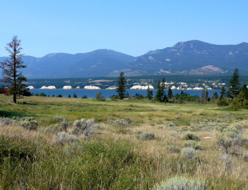 Conserving wild landscapes for the Columbia Valley community: Columbia Lake—Lot 48